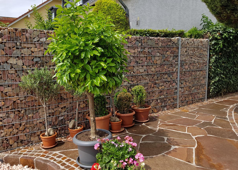 Garten Wirksam Gegen Larm Schutzen Newhome Ch Blog